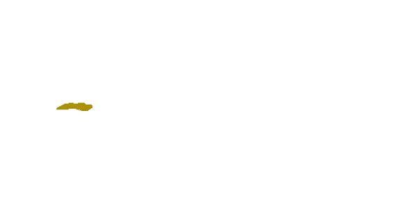 contract-pro-WHITE